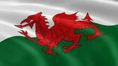 Welsh flag in the wind - stock footage