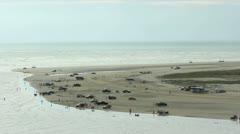 Cars on a beach on the Pacific coast of Ecuador Stock Footage