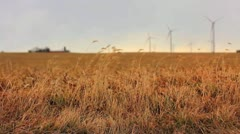 Wind Turbine Wide 23.98 1080 - stock footage