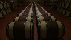Wine barrels in a row Stock Footage