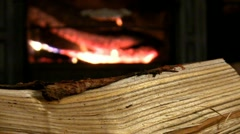 Log by the fire; 4 Stock Footage