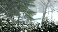 Snowstorm Stock Footage