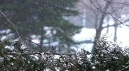 Stock Video Footage of Winter Ambiance Snowstorm 2