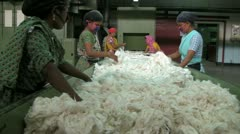 Cotton Sorting and Filtering - stock footage