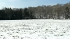 Field covered with snow in winter pan Stock Footage
