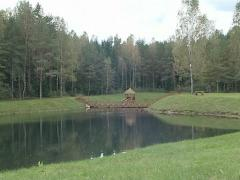 Bridge over lake and  bower. Recreation in nature. Stock Footage