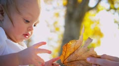 Cute Baby Boy Touching a Leaf Stock Footage
