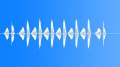 Bird Chirp Alone 3 Sound Effect