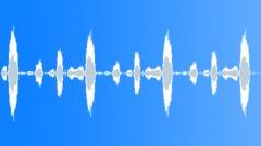 Rhinoceros Grunts Vintage 2 - sound effect