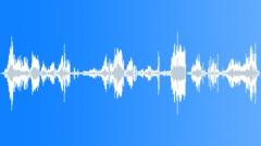 Chickens Hen House Chorus - sound effect