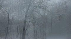 Glass Door Opens to Winter Scene Stock Footage