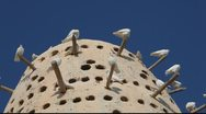 Stock Video Footage of Pigeon Tower - Katarra Cultural Village - Doha, Qatar