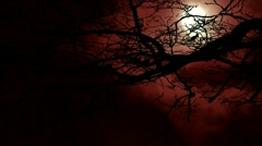 Full moon flowing past bare leafless tree Stock Footage