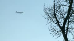 Tracking shot of plane descent behind trees Stock Footage