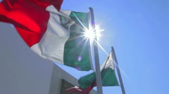 Mexican flag 3 Stock Footage
