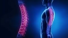 Focused on spine LUMBAR region in loop Stock Footage