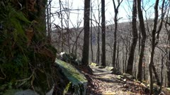 Mammoth Cave Trail Fall Stock Footage