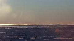 Man Walking Sea Ice Stock Footage