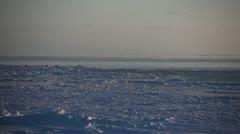Arctic Sea Ice Sheet, Bering Sea, Nome, Alaska Stock Footage