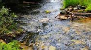 Close-up of the bank mountain river with pure water in Siberia, Russia Stock Footage