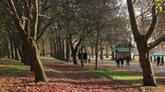 London, park in Autumn Fall Stock Footage