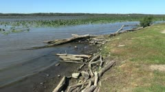 Illinois Mississippi River with driftwood Stock Footage