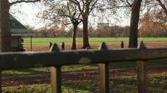 London park in autumn - stock footage