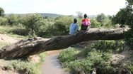 Two African Boys Sitting on Fallen Tree Above Stream Stock Footage