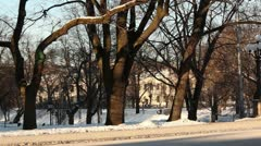People walking by in winter city park ProRes Stock Footage