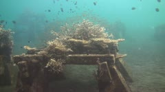 Artificial reef - stock footage