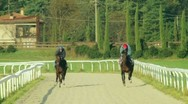 Stock Video Footage of Slow motion gallop horses