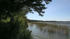 Minnesota Lake Itasca with reeds Stock Footage