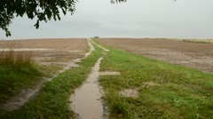 Summer end rain in the farm fields Stock Footage