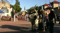 Kids Sitting On Longhorn Bull Stock Footage