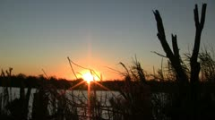 Everglades Sunset 3 - stock footage