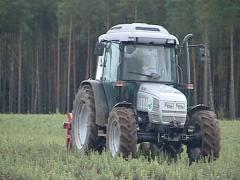 Tractor plow up fir tree seedlings. Forest planting industry. - stock footage