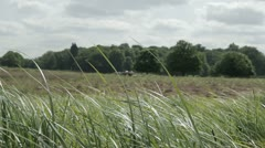 Stock Video Footage of English countryside