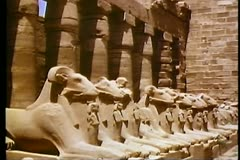 A line of Ram Statues at the Temple of Karnak in Luxor, Egypt 108081 Stock Footage