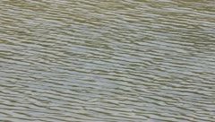 Wave in lake Stock Footage