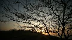 Sunset In Desert Stock Footage