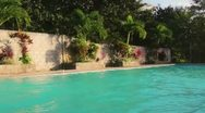 Honduran Pool Stock Footage