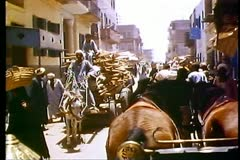 A busy street in a village outside of Luxor, Egypt 108101 Stock Footage