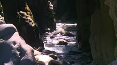 Gorge and river, very cool long shot, Panama highlands Stock Footage