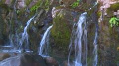 Multiple springs on rock wall, Panama highlands rainforest Stock Footage