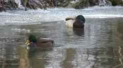 Winter - ice - stream Stock Footage