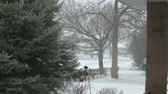 Snow In Neighbourhood - stock footage