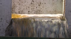 Agriculture, coffee bean process, beans circulating in water channel. Stock Footage
