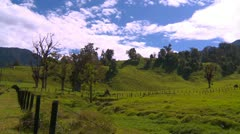 Agriculture, pasture land highlands, pan Stock Footage