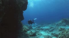 Diver Fly By Stock Footage