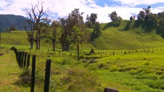 agriculture, pasture land highlands, steep - stock footage